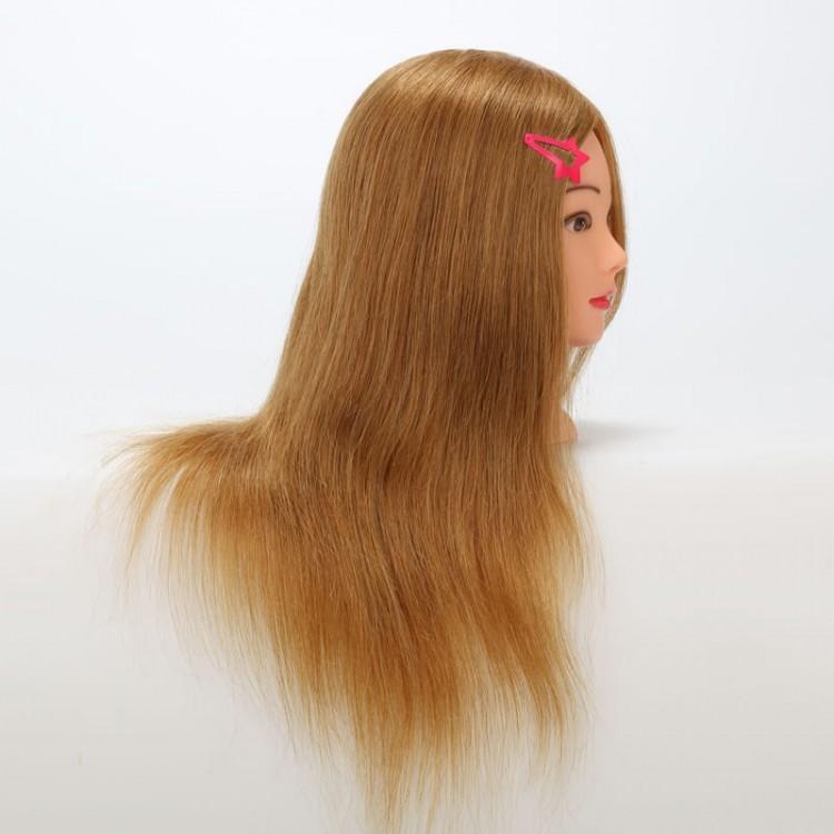Salon Practice Model