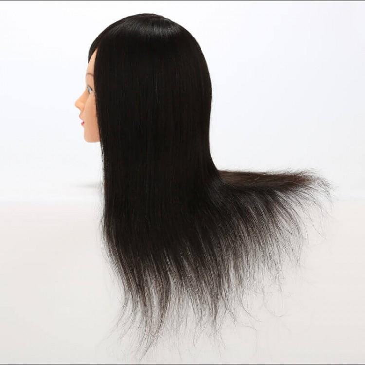 Unprocessed Human Hair 12''-18'' Training Head